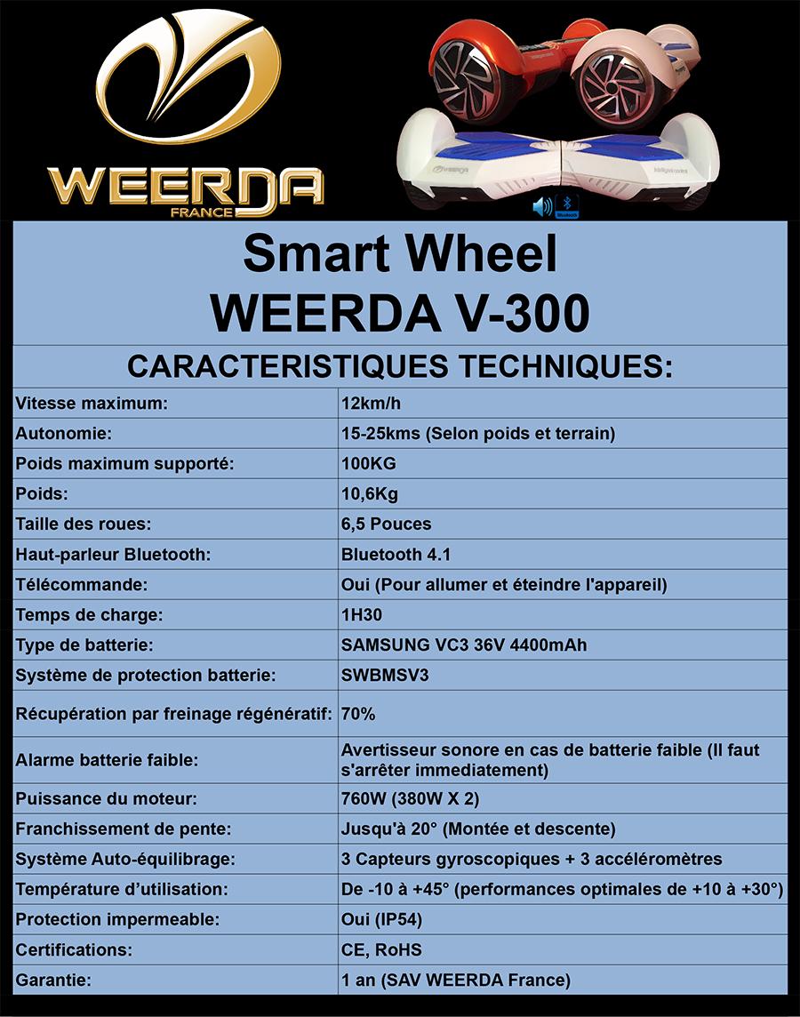 Fiche Technique WEERDA V-300